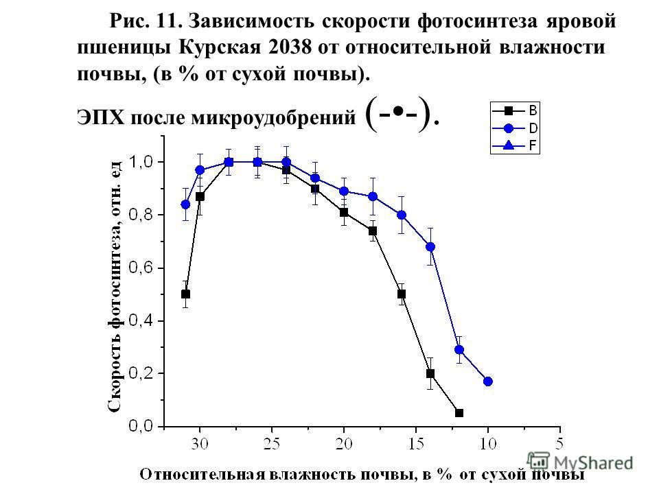 Рис. 11. Зависимость скорости фотосинтеза яровой пшеницы Курская 2038 от относительной влажности почвы, (в % от сухой почвы). ЭПХ после микроудобрений (--).