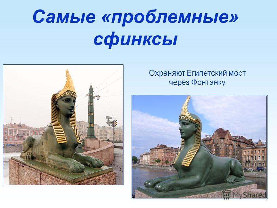Самые «проблемные» сфинксы Охраняют Египетский мост через Фонтанку