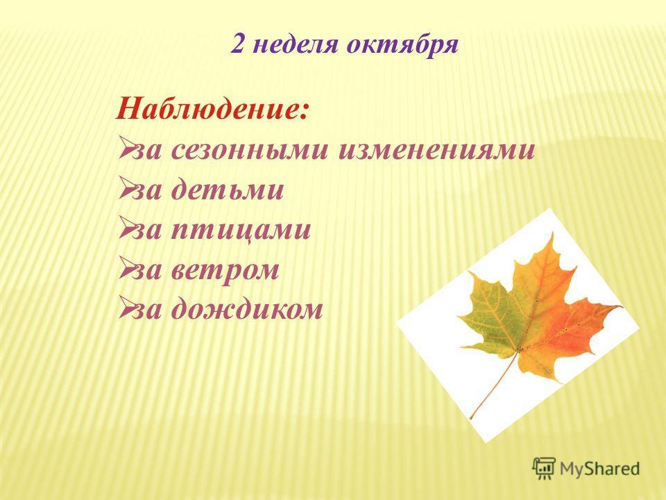 2 неделя октября Наблюдение: за сезонными изменениями за детьми за птицами за ветром за дождиком