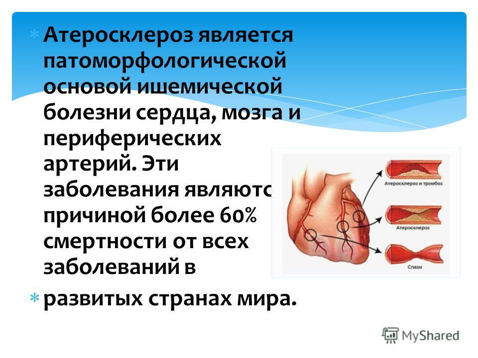 Атеросклероз является патоморфологической основой ишемической болезни сердца, мозга и периферических артерий. Эти заболевания являются причиной более 60% смертности от всех заболеваний в развитых странах мира.