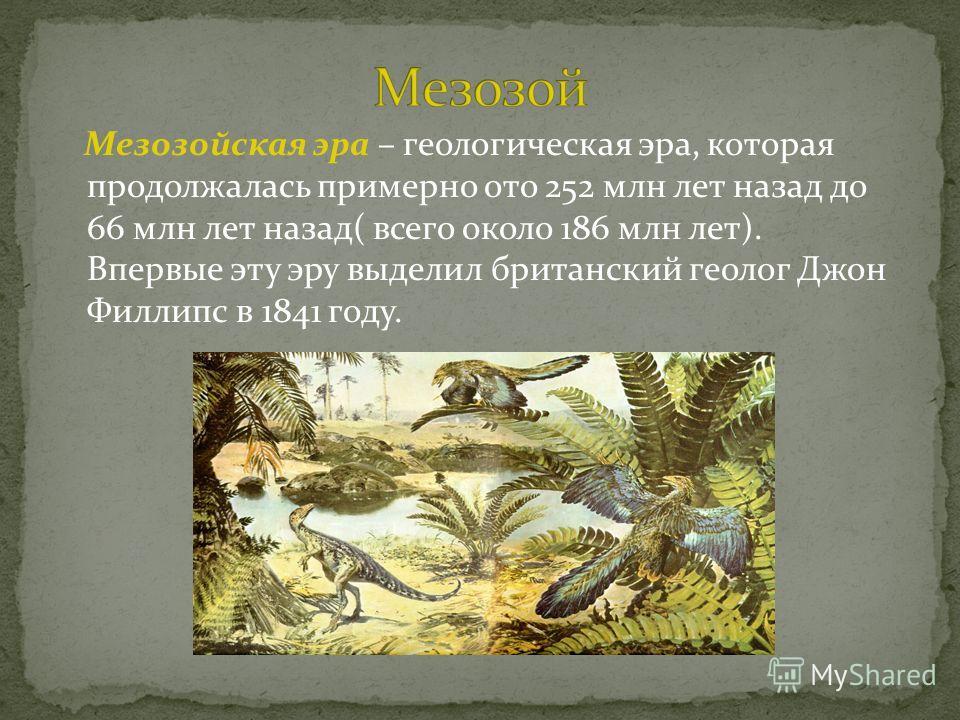 Мезозойская эра – геологическая эра, которая продолжалась примерно ото 252 млн лет назад до 66 млн лет назад( всего около 186 млн лет). Впервые эту эру выделил британский геолог Джон Филлипс в 1841 году.