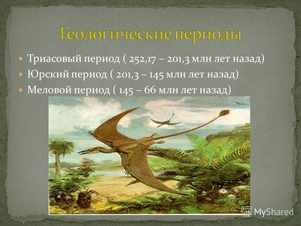 Триасовый период ( 252,17 – 201,3 млн лет назад) Юрский период ( 201,3 – 145 млн лет назад) Меловой период ( 145 – 66 млн лет назад)