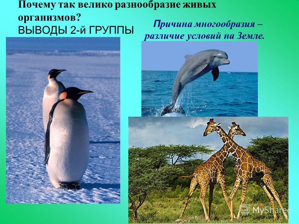 Почему так велико разнообразие живых организмов? ВЫВОДЫ 2-й ГРУППЫ П ричина многообразия – различие условий на Земле.