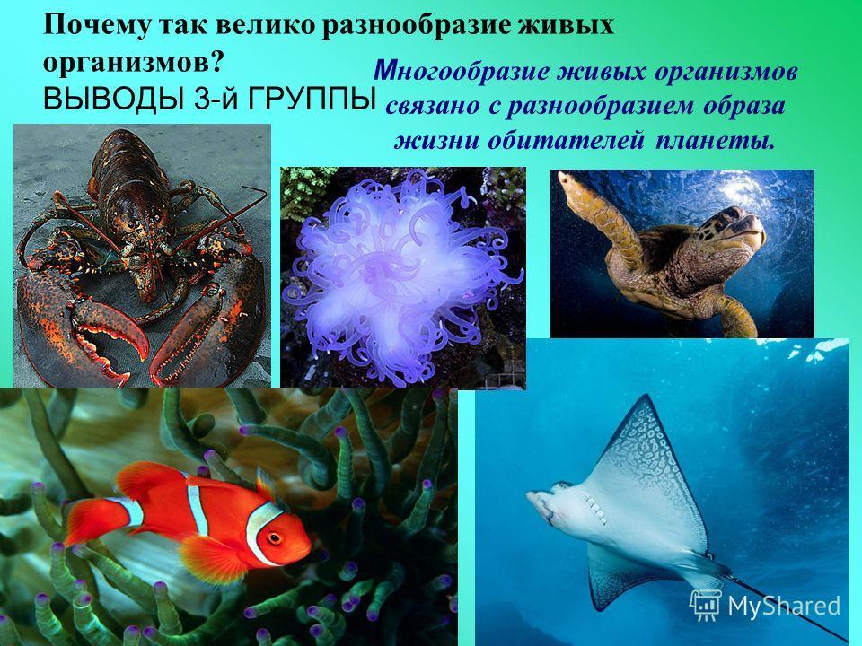Почему так велико разнообразие живых организмов? ВЫВОДЫ 3-й ГРУППЫ М ногообразие живых организмов связано с разнообразием образа жизни обитателей планеты.
