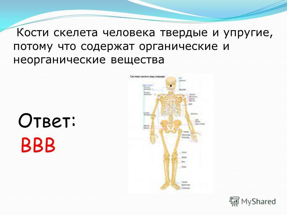 Кости скелета человека твердые и упругие, потому что содержат органические и неорганические вещества Ответ: ВВВ