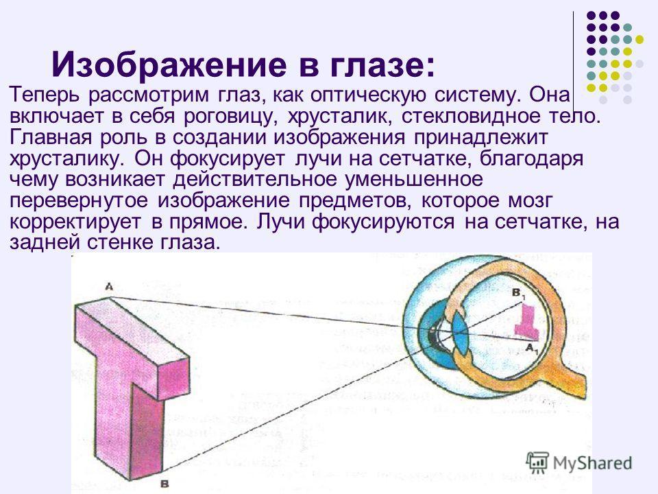 Изображение в глазе: Теперь рассмотрим глаз, как оптическую систему. Она включает в себя роговицу, хрусталик, стекловидное тело. Главная роль в создании изображения принадлежит хрусталику. Он фокусирует лучи на сетчатке, благодаря чему возникает дейс