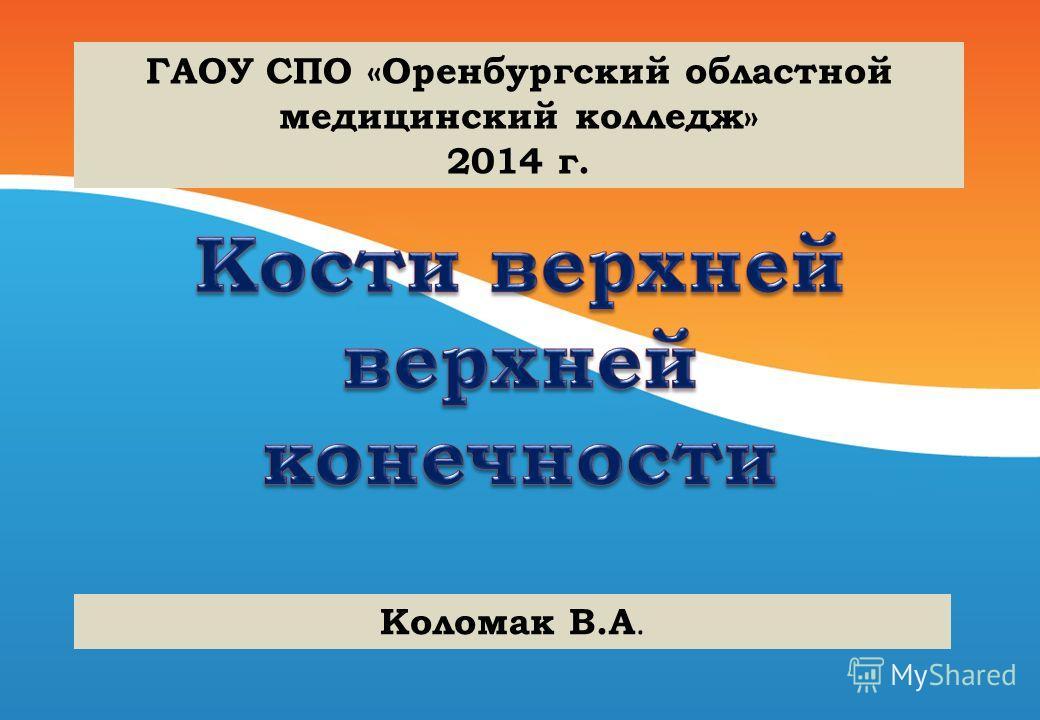 ГАОУ СПО «Оренбургский областной медицинский колледж» 2014 г. Коломак В.А.