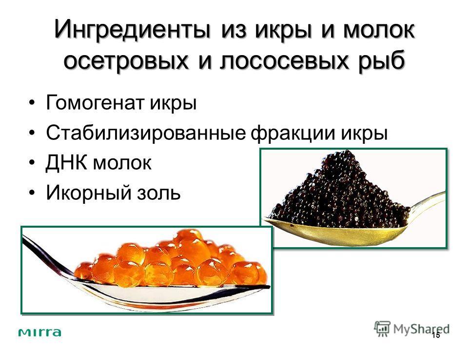 Ингредиенты из икры и молок осетровых и лососевых рыб Гомогенат икры Стабилизированные фракции икры ДНК молок Икорный золь 15