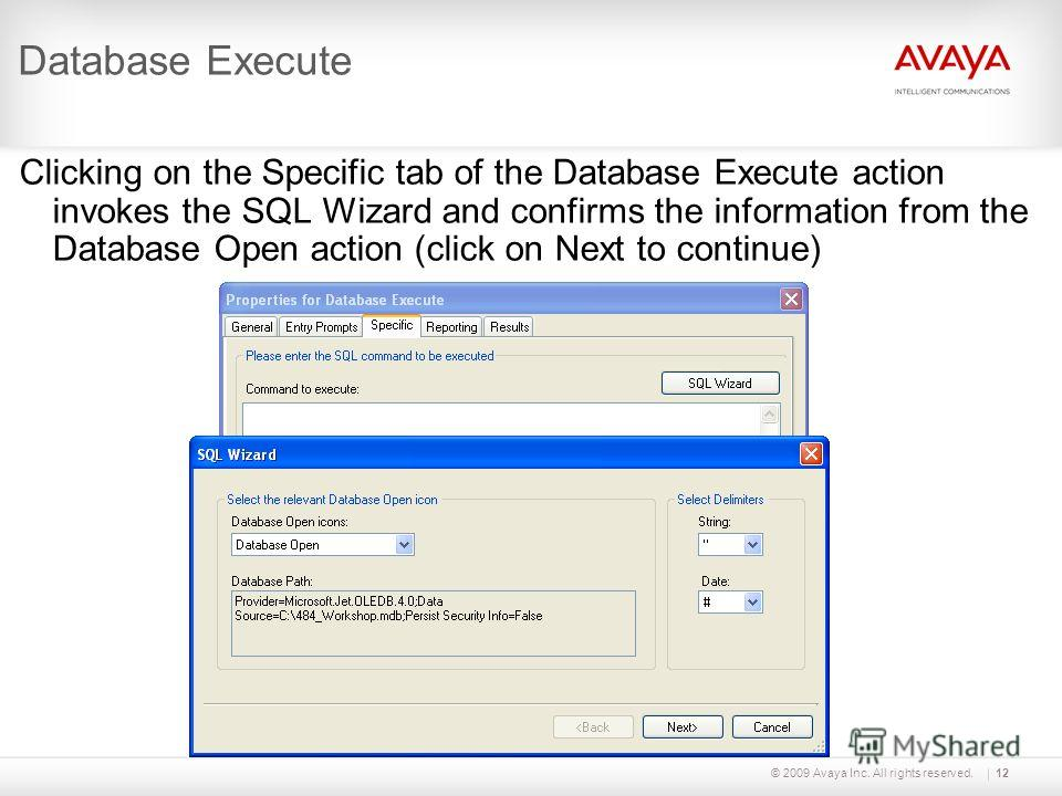 © 2009 Avaya Inc. All rights reserved.12 Database Execute Clicking on the Specific tab of the Database Execute action invokes the SQL Wizard and confirms the information from the Database Open action (click on Next to continue)