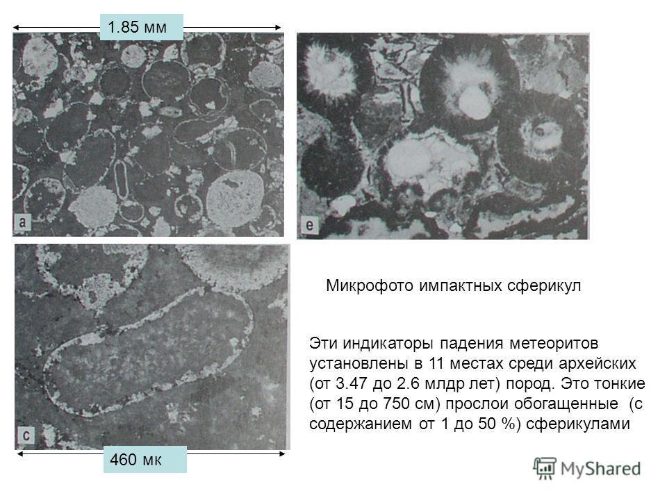 Микрофото импактных сферикул 1.85 мм 460 мк Эти индикаторы падения метеоритов установлены в 11 местах среди архейских (от 3.47 до 2.6 млрд лет) пород. Это тонкие (от 15 до 750 см) прослои обогащенные (с содержанием от 1 до 50 %) сферикулами