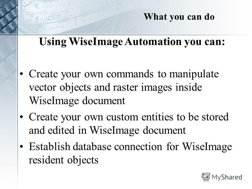 What you can do Using WiseImage Automation you can: Create your own commands to manipulate vector objects and raster images inside WiseImage document Create your own custom entities to be stored and edited in WiseImage document Establish database con