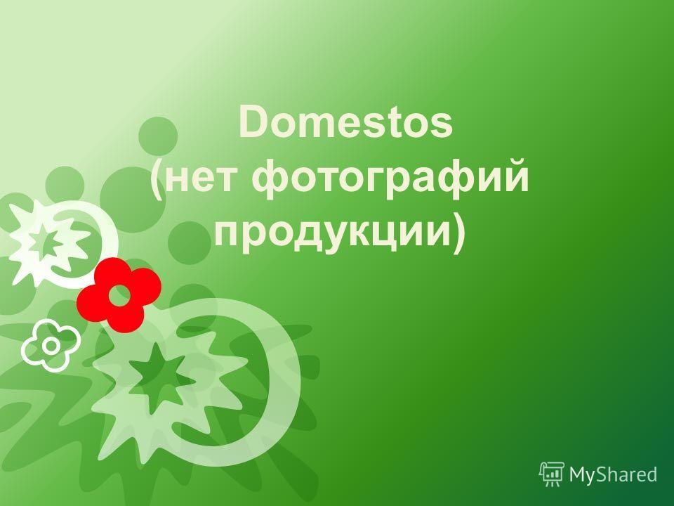 Domestos (нет фотографий продукции)