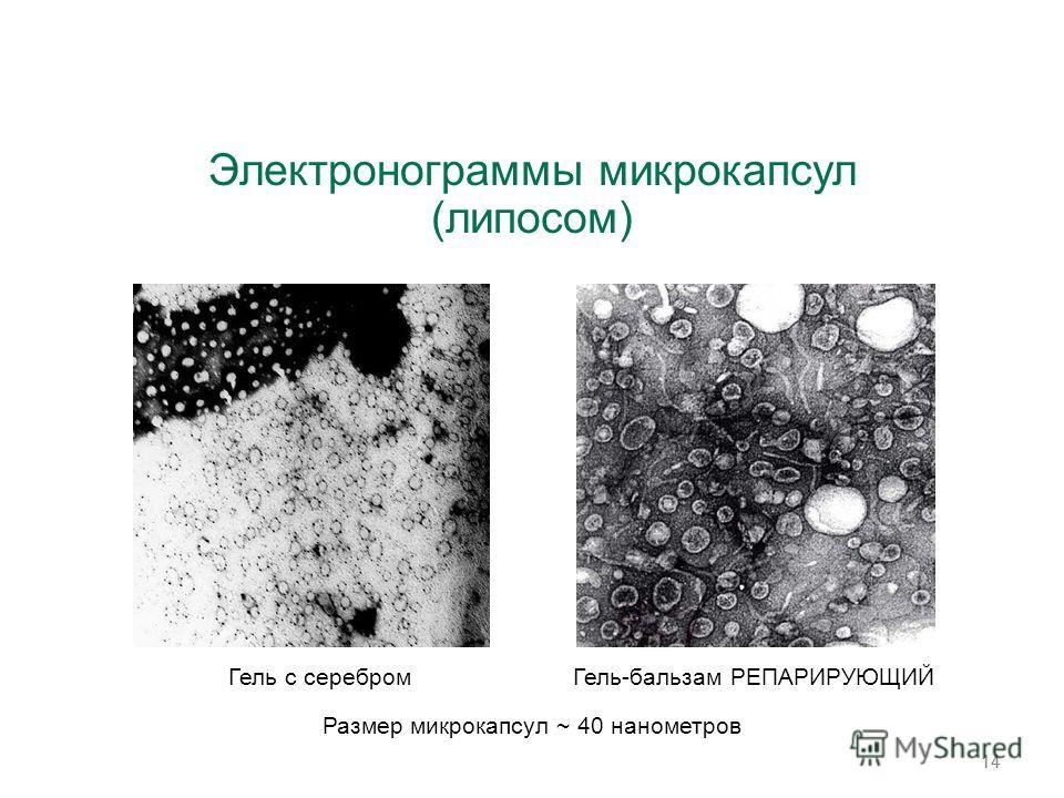 14 Размер микрокапсул ~ 40 нанометров Электронограммы микрокапсул (липосом) Гель с серебром Гель-бальзам РЕПАРИРУЮЩИЙ