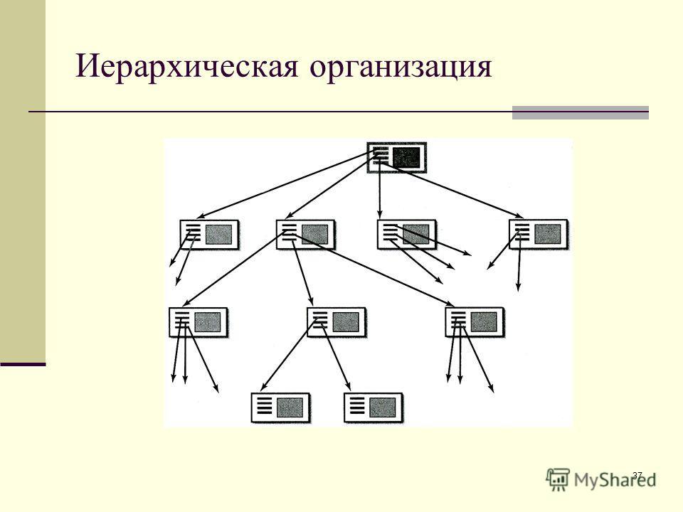 37 Иерархическая организация