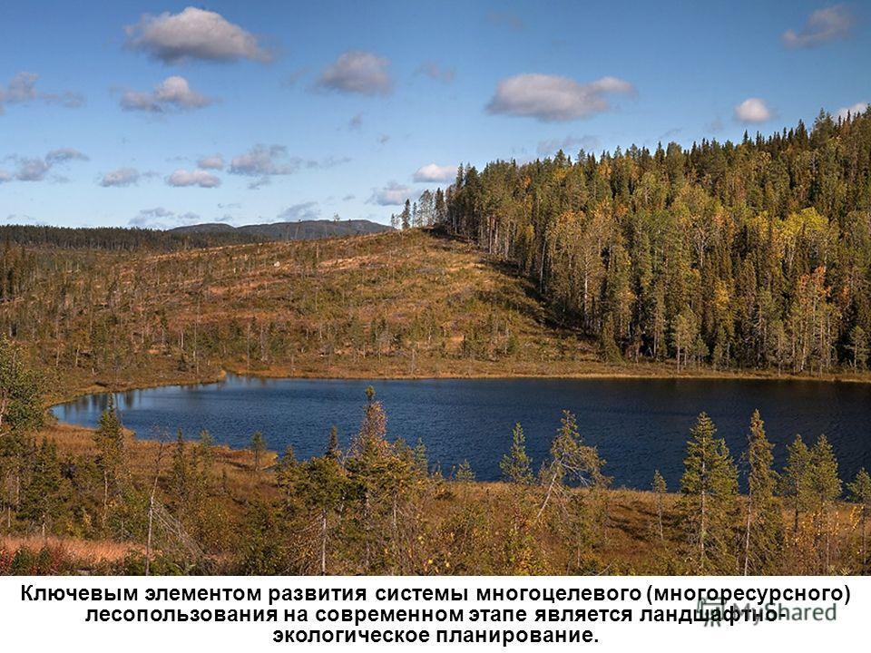 Ключевым элементом развития системы многоцелевого (много ресурсного) лесопользования на современном этапе является ландшафтно- экологическое планирование.
