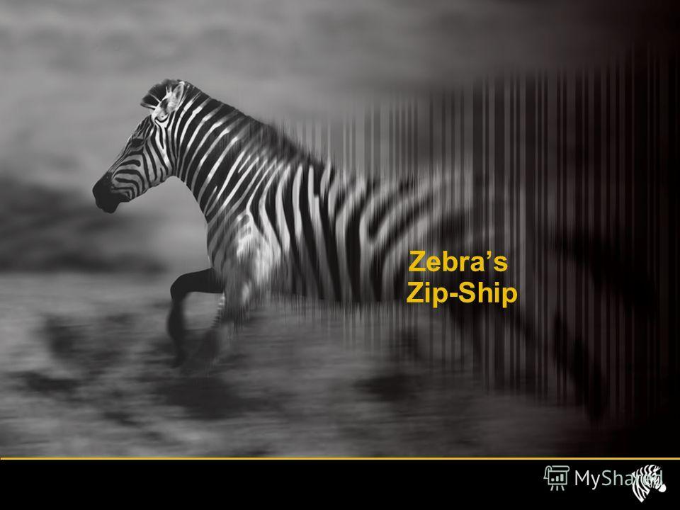 Zebras Zip-Ship