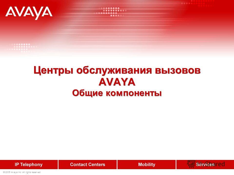 © 2005 Avaya Inc. All rights reserved. Центры обслуживания вызовов AVAYA Общие компоненты