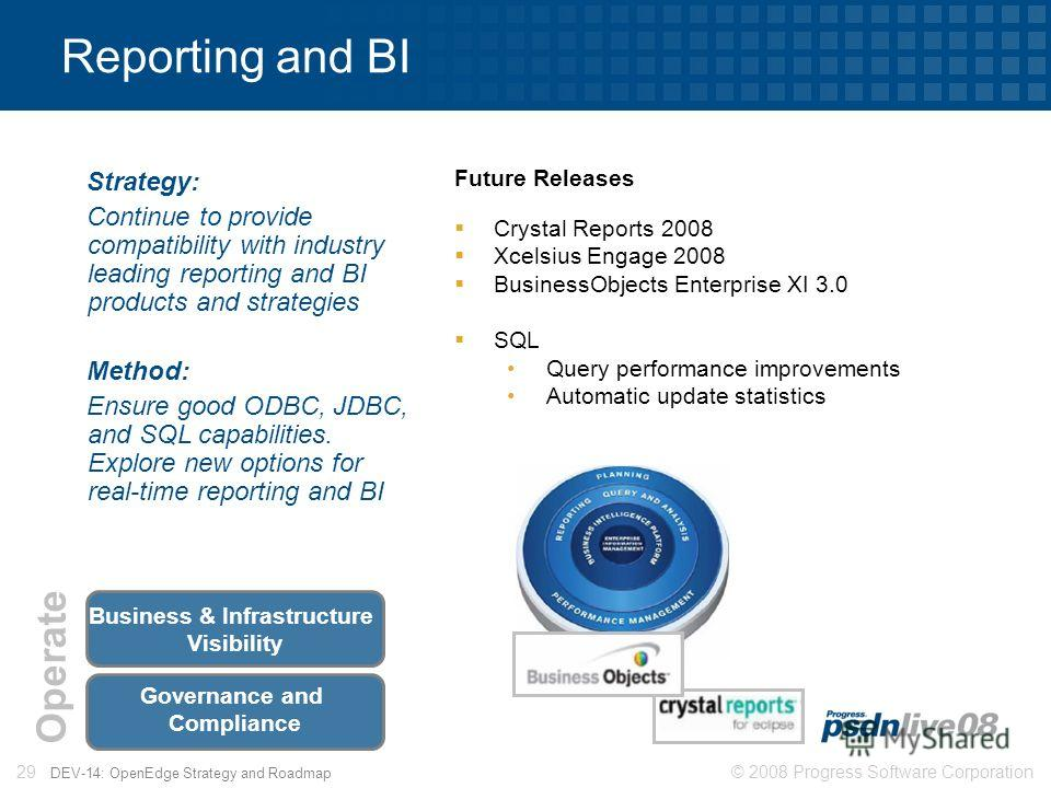 © 2008 Progress Software Corporation29 DEV-14: OpenEdge Strategy and Roadmap Reporting and BI Strategy: Continue to provide compatibility with industry leading reporting and BI products and strategies Method: Ensure good ODBC, JDBC, and SQL capabilit