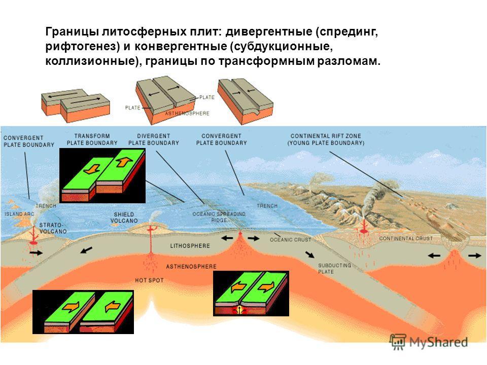 Границы литосферных плит: дивергентные (спрединг, рифтогенез) и конвергентные (субдукционные, коллизионные), границы по трансформным разломам.