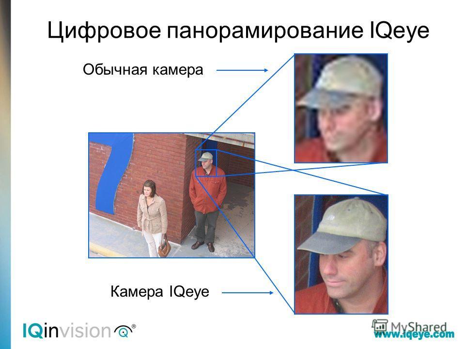 Обычная камера Камера IQeye Цифровое панорамирование IQeye
