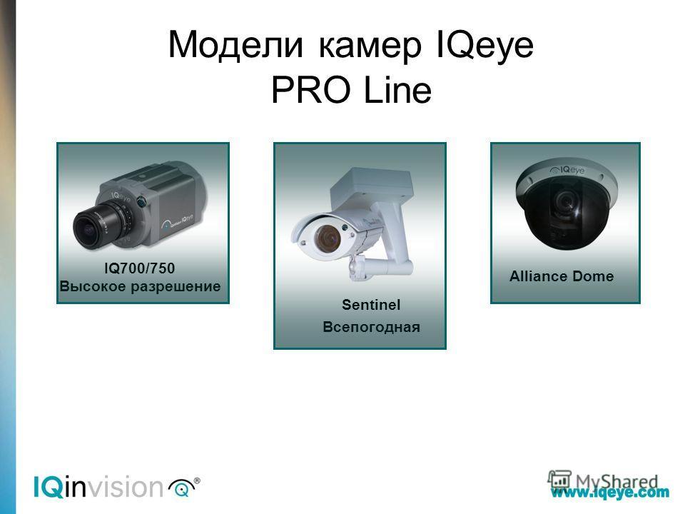 Модели камер IQeye PRO Line IQ700/750 Высокое разрешение Sentinel Всепогодная Alliance Dome