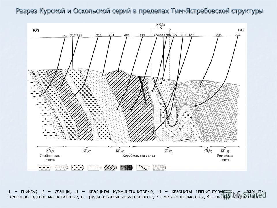 1 – гнейсы; 2 – сланцы; 3 – кварциты куммингтонитовые; 4 – кварциты магнетитовые; 5 – кварциты железнослюдково-магнетитовые; 6 – руды остаточные мартитовые; 7 – мета конгломераты; 8 – сланцы карбонатные Разрез Курской и Оскольской серий в пределах Ти
