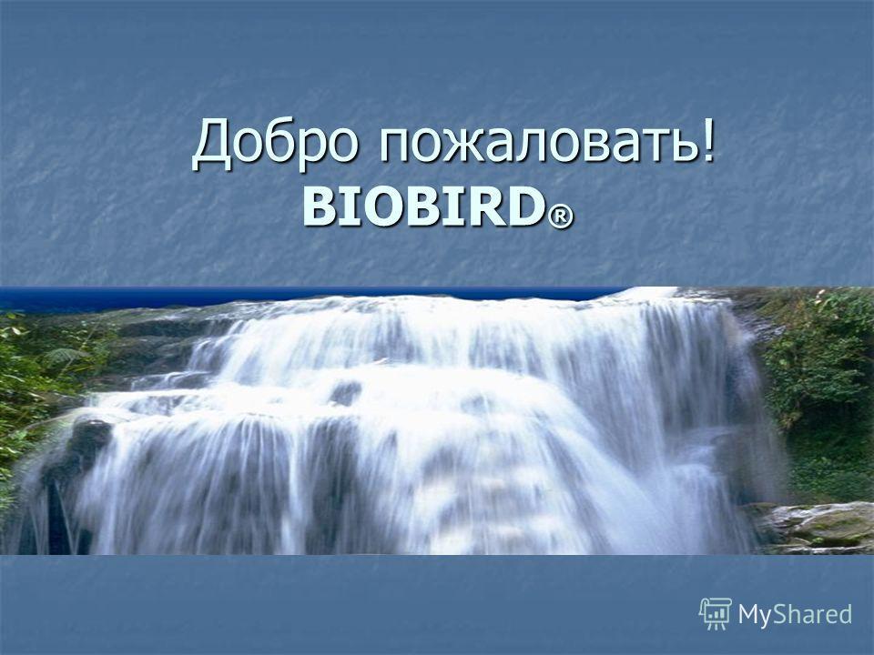 Добро пожаловать! BIOBIRD ® Добро пожаловать! BIOBIRD ®