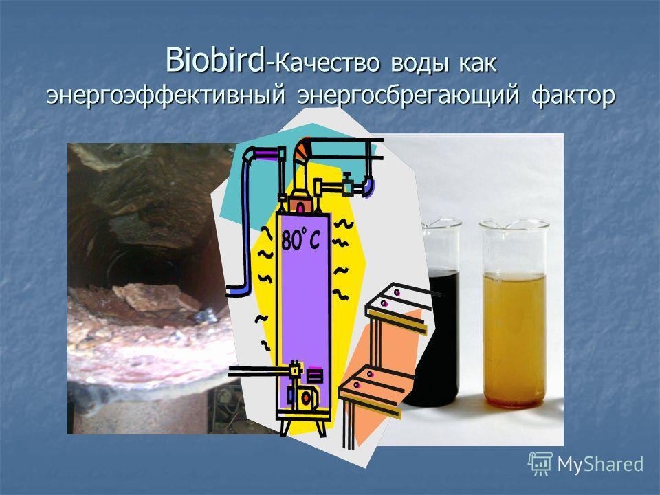 Biobird -Качество воды как энергоэффективный энергосберегающий фактор