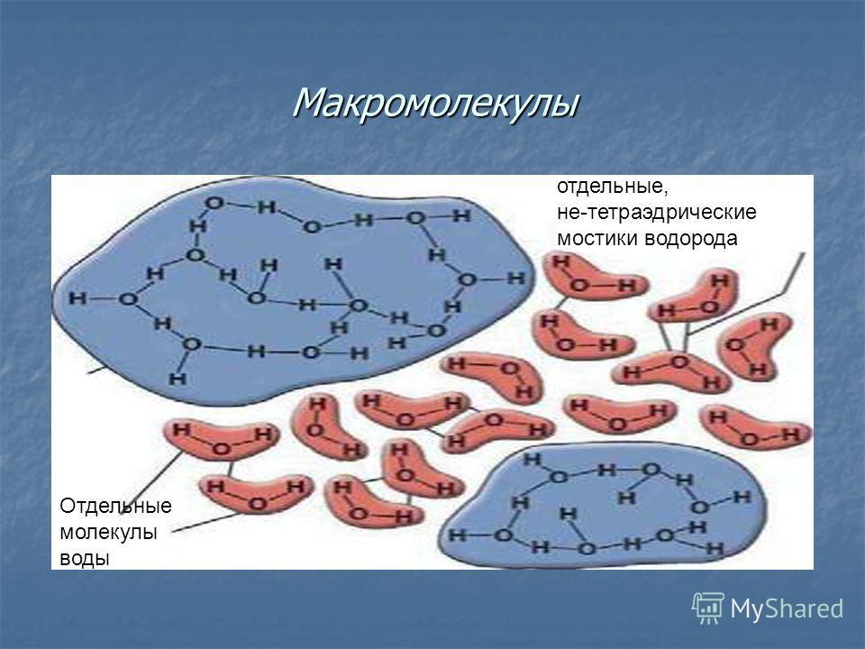Макромолекулы Отдельные молекулы воды отдельные, не-тетраэдрические мостики водорода