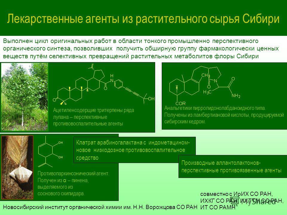 Лекарственные агенты из растительного сырья Сибири Ацетиленсодерщие тритерпены ряда лупана перспективные противовоспалительные агенты Выполнен цикл оригинальных работ в области тонкого промышленно перспективного органического синтеза, позволивших пол