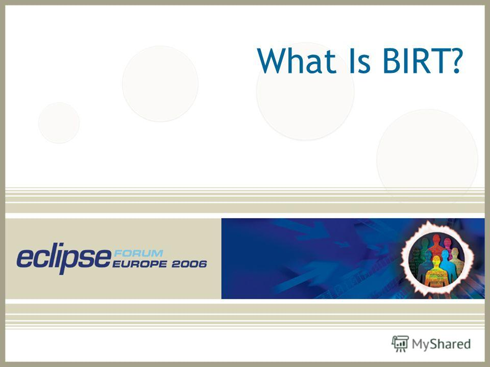 What Is BIRT?