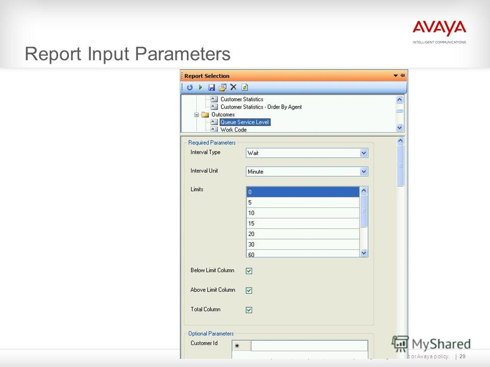 Avaya – Proprietary. Use pursuant to your signed agreement or Avaya policy. Report Input Parameters 29