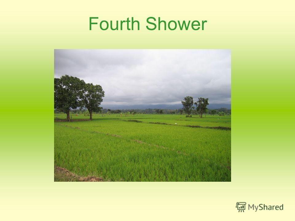 Fourth Shower