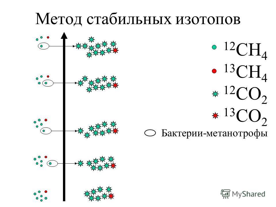 Метод стабильных изотопов 12 СН 4 13 СН 4 12 СО 2 13 СО 2 Бактерии-метанотрофы