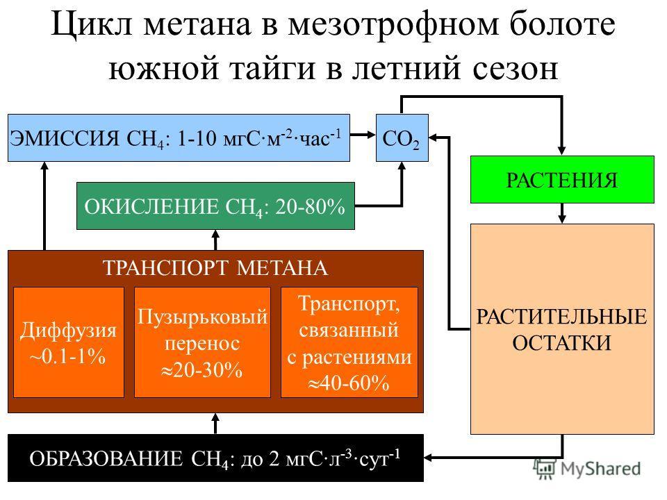 Цикл метана в мезотрофном болоте южной тайги в летний сезон ОБРАЗОВАНИЕ СН 4 : до 2 мгС·л -3 ·сут -1 ТРАНСПОРТ МЕТАНА Диффузия ~0.1-1% Пузырьковый перенос 20-30% Транспорт, связанный с растениями 40-60% ОКИСЛЕНИЕ СН 4 : 20-80% ЭМИССИЯ СН 4 : 1-10 мгС