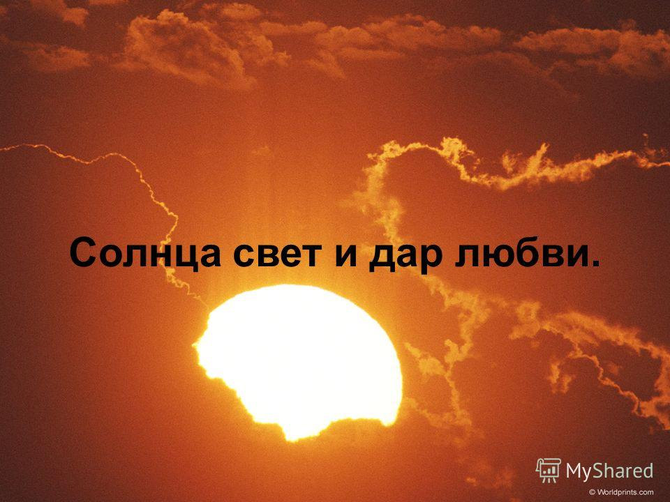 Солнца свет и дар любви.