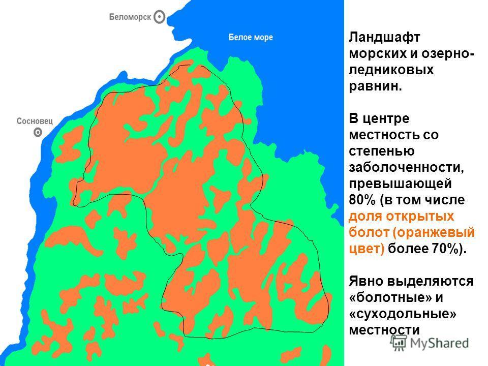 Ландшафт морских и озерно- ледниковых равнин. В центре местность со степенью заболоченности, превышающей 80% (в том числе доля открытых болот (оранжевый цвет) более 70%). Явно выделяются «болотные» и «суходольные» местности