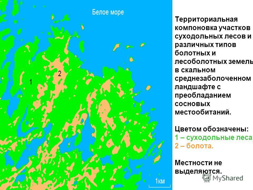 Территориальная компоновка участков суходольных лесов и различных типов болотных и лесоболотных земель в скальном средне заболоченном ландшафте с преобладанием сосновых местообитаний. Цветом обозначены: 1 – суходольные леса, 2 – болота. Местности не