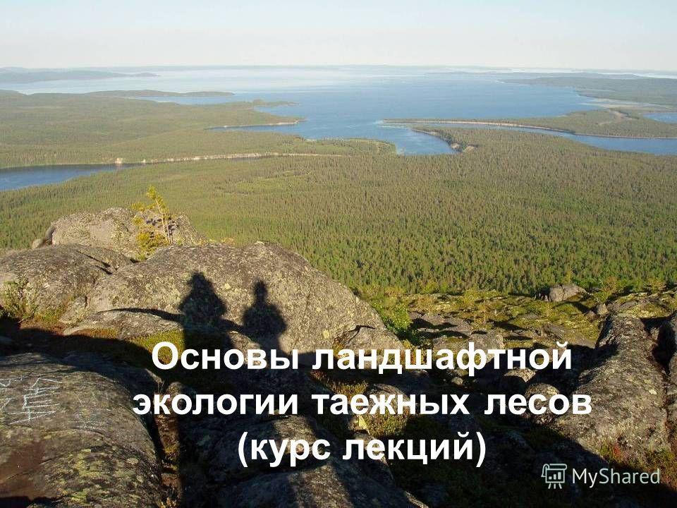 Основы ландшафтной экологии таежных лесов (курс лекций)