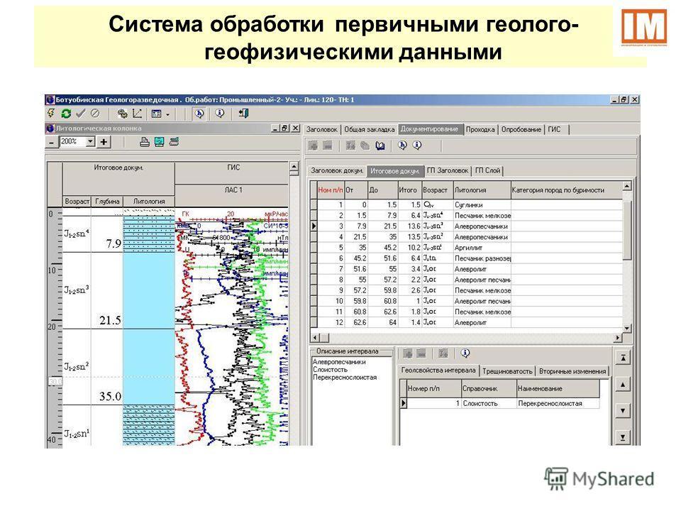 Система обработки первичными геолого- геофизическими данными