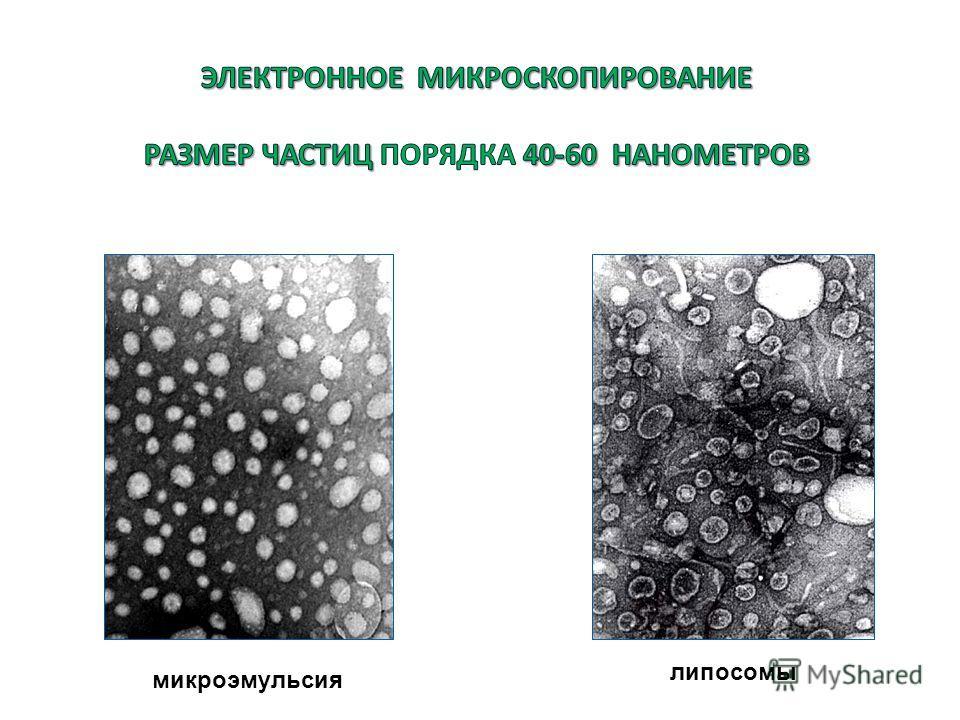 микроэмульсия липосомы
