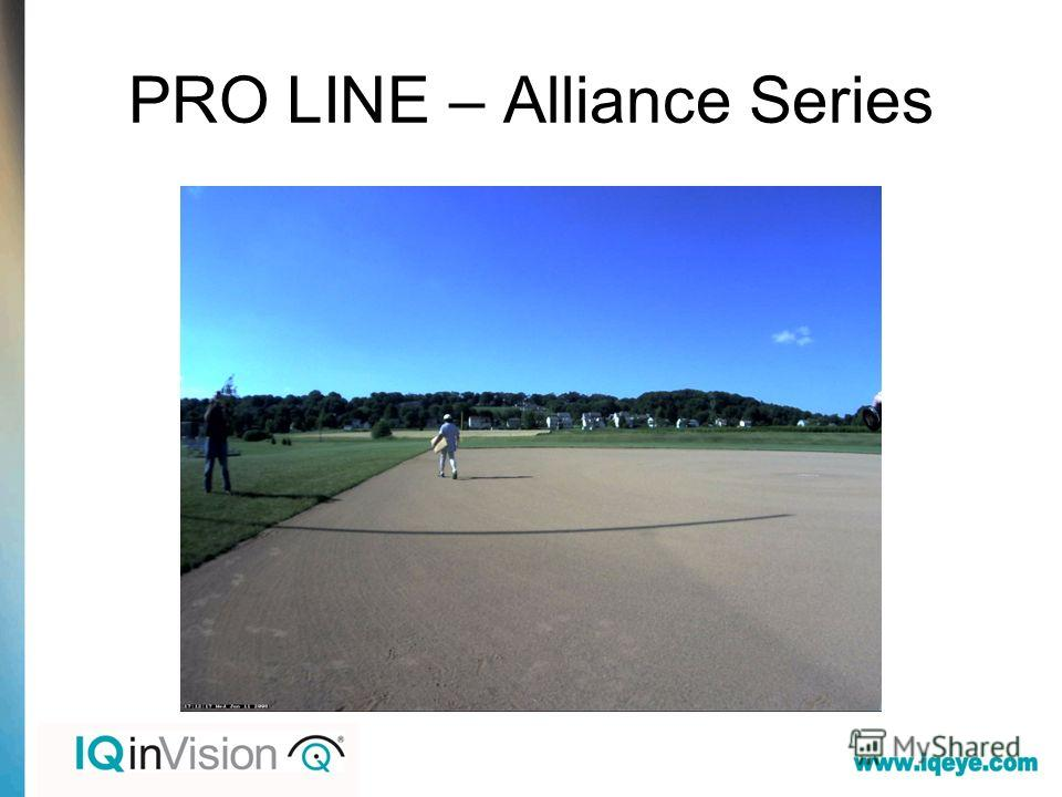 PRO LINE – Alliance Series