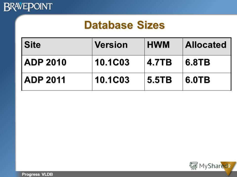 Progress VLDB 12 Database Sizes SiteVersionHWMAllocated ADP 2010 10.1C034.7TB6.8TB ADP 2011 10.1C035.5TB6.0TB