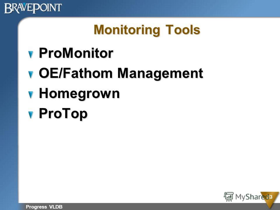 Progress VLDB 23 Monitoring Tools ProMonitor OE/Fathom Management HomegrownProTop