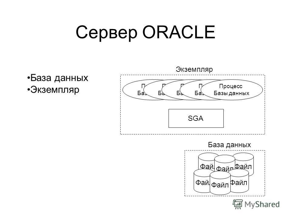 Файл Сервер ORACLE База данных Экземпляр Процесс Базы данных Процесс Базы данных Процесс Базы данных Процесс Базы данных Процесс Базы данных SGA База данных Файл