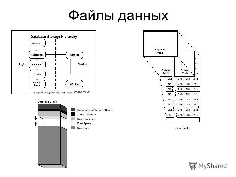Файлы данных