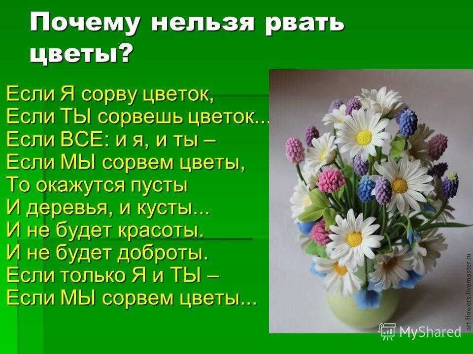Почему нельзя рвать цветы? Если Я сорву цветок, Если ТЫ сорвешь цветок... Если ВСЕ: и я, и ты – Если МЫ сорвем цветы, То окажутся пусты И деревья, и кусты... И не будет красоты. И не будет доброты. Если только Я и ТЫ – Если МЫ сорвем цветы...
