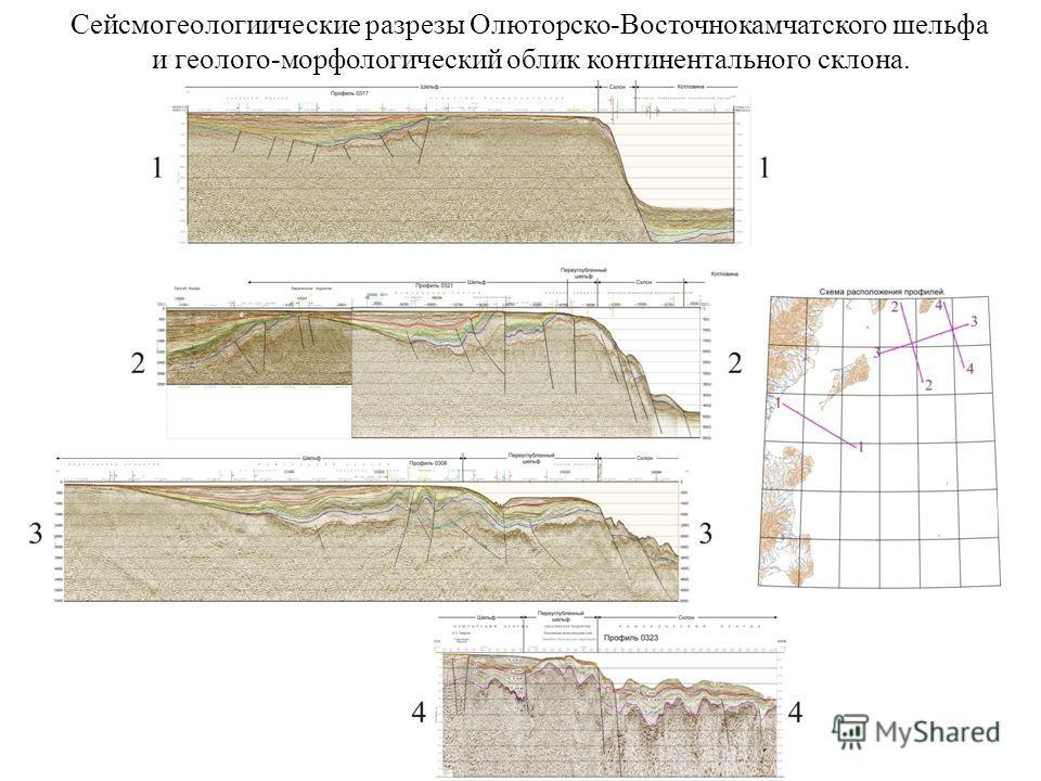 Сейсмогеологиические разрезы Олюторско-Восточнокамчатского шельфа и геолого-морфологический облик континентального склона.