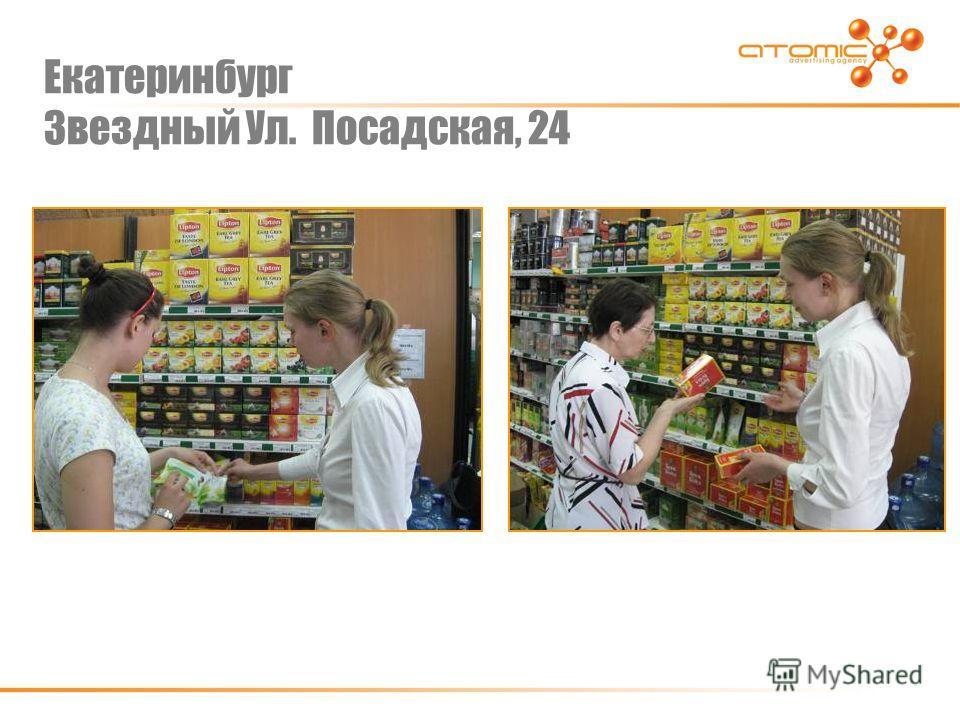 Екатеринбург Звездный Ул. Посадская, 24
