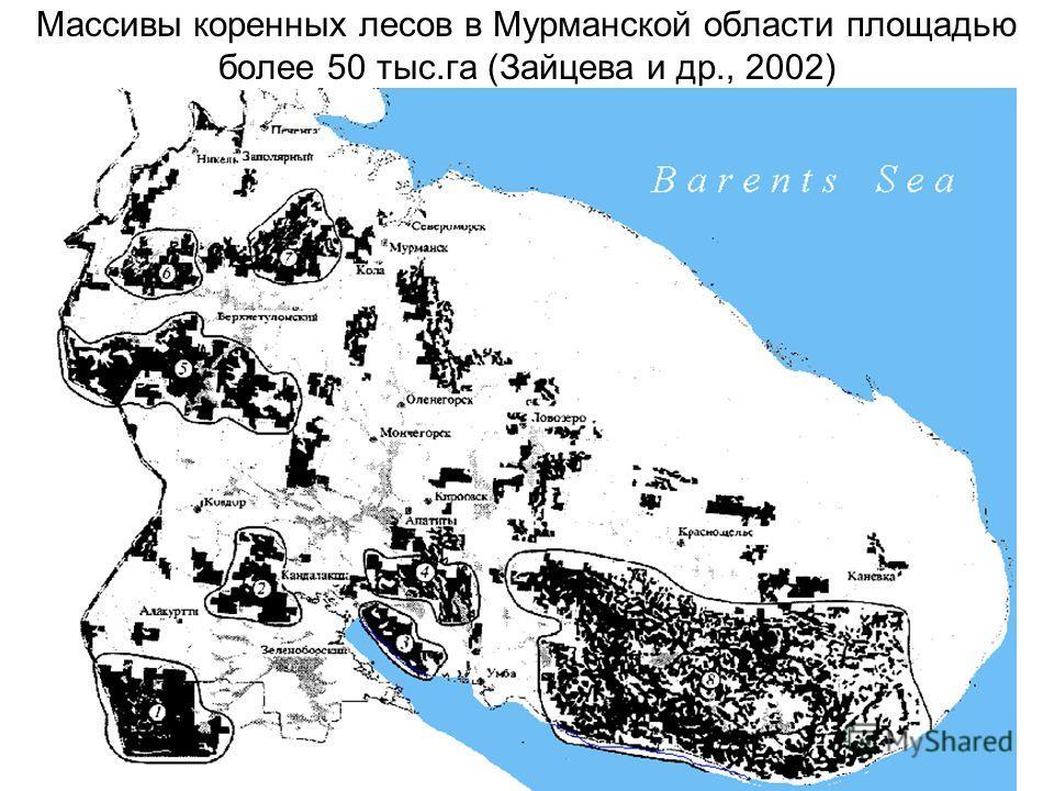 Массивы коренных лесов в Мурманской области площадью более 50 тыс.га (Зайцева и др., 2002)